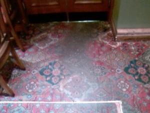 pub carpet cleaner edinburgh