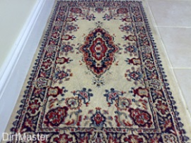 rug cleaning after