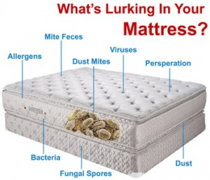 mattress clean