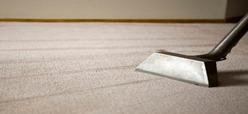 carpet cleaner edinburgh