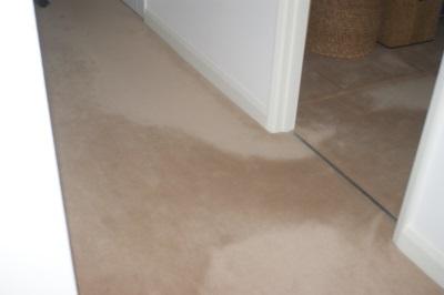 Carpet pile distortion
