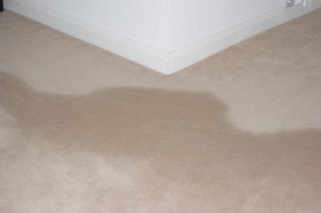 Pile Carpet Reversal