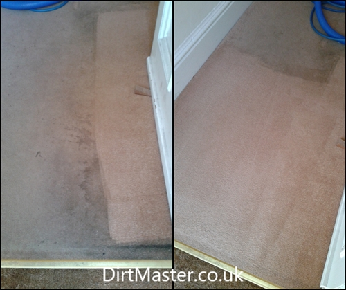 Carpet Cleaning East Craigs Edinburgh