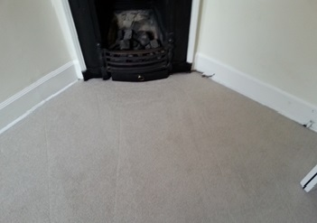 Stain Removal Carpet Cleaner Morningside